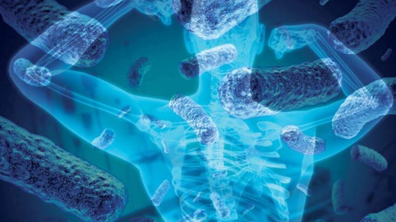 Mikrobiyom ve Mikrobiyota Nedir?